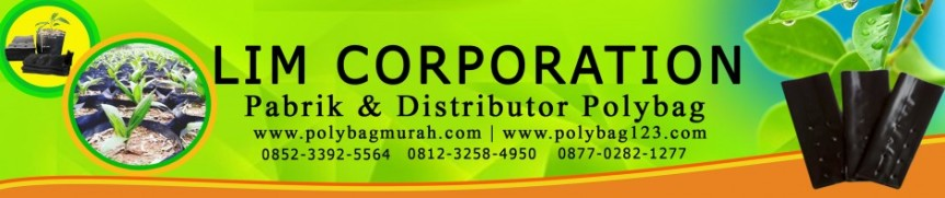 cropped-banner-wodpress-polybag-2
